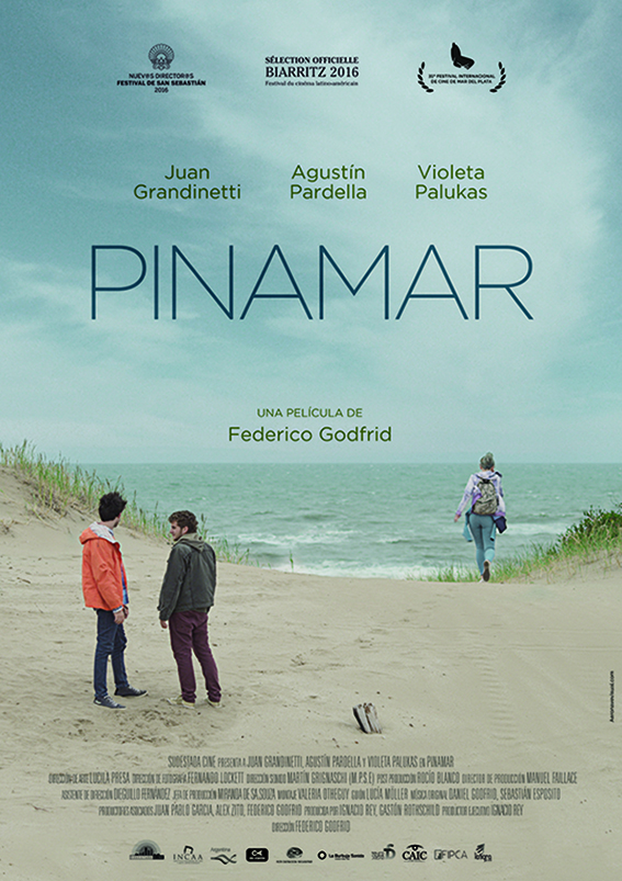 PIN-Afiche-A4.jpg